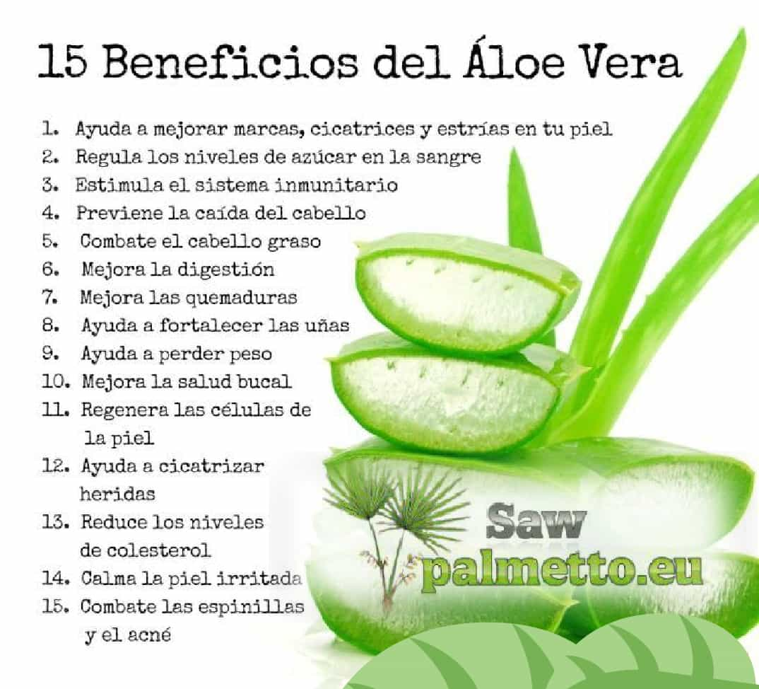 Properties of The Aloe vera and its applications.